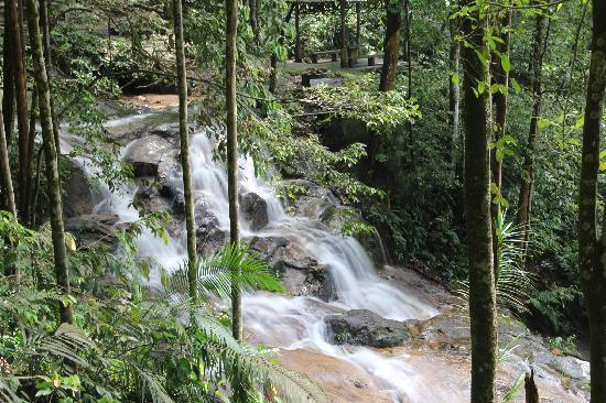 The Kanching Forest Reserve Area Is A Haven For Various Species Of Birdonkeys Waterfalls S Dramatic Backdrop With Jungle