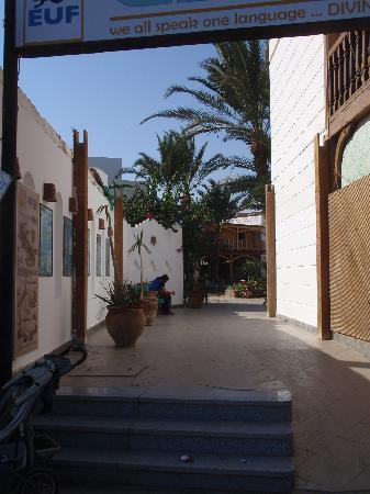 ‪‪Dahab Divers South Sinai Hotel & Dive center‬: Entrance from street‬