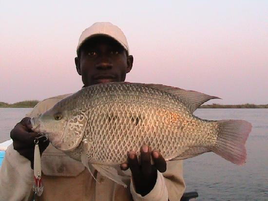Shackletons: My skipper Evans with my PB of 3.3kgs