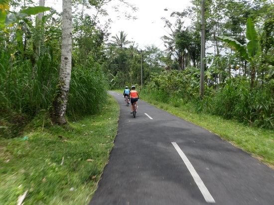 BaliGoBike - Bali Cycling Tours