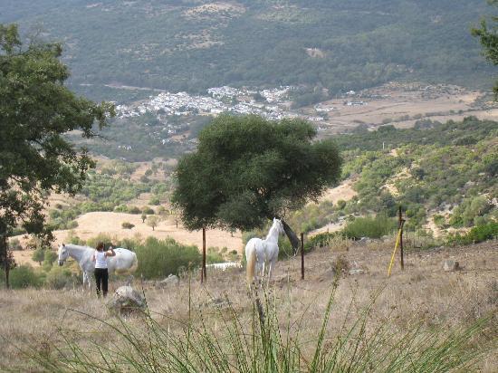 Ride Andalucia: View from Las Lagunetas