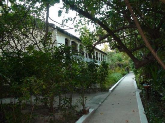 บิยาดู ไอแลนด์ รีสอร์ท: the path around the island