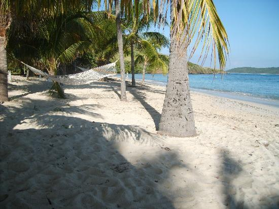 The Reef Golf and Beach Resort: Relaxing beach, 83 degree water, white soft sand, comfy hammocks.