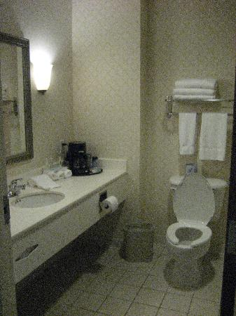 Holiday Inn Express Hagerstown : The bathroom