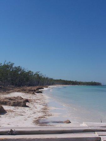 Gran Caribe Club Atlantico : spiaggia