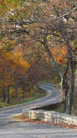 Skyline Drive: Road Colors