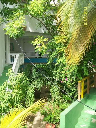 MJI St Lucia: MJI Tropical Landscape!