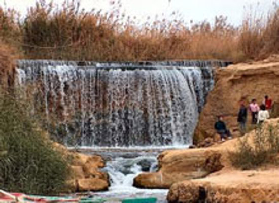 Easy Travel Egypt - Day Tours : Fayoum Oasis
