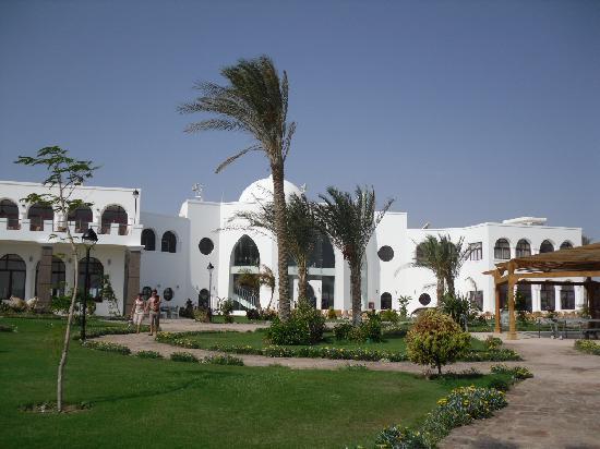 Gorgonia Beach Resort: Réception
