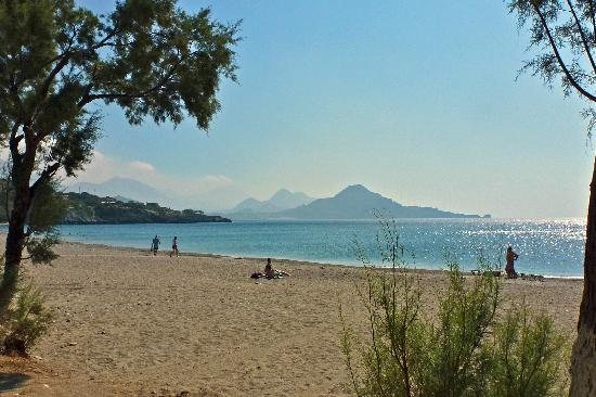Morpheas Apartments: Souda beach, next to Plakias - our favourite for swimming