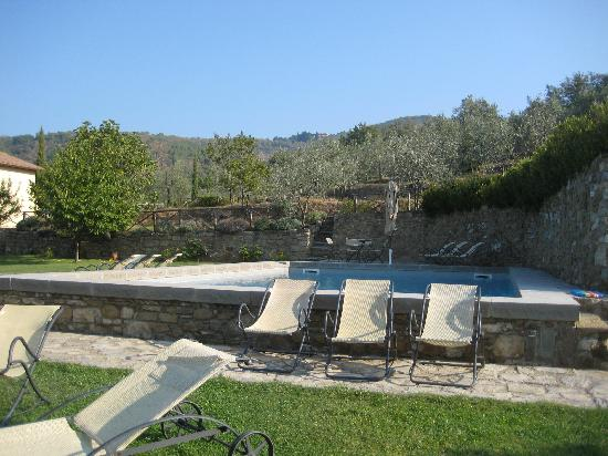 Relais Villa Belpoggio: swimming pool by the olive grove