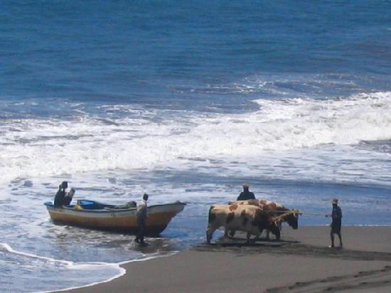 Los Maquis Hotel : Fishermen at Buchupureo