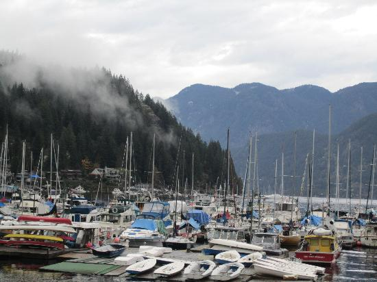 Deep Cove: Walking the marina past ships moored