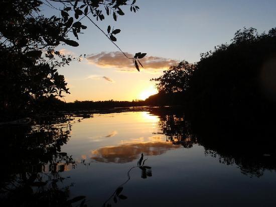 كينوت إل إنكانتو: Hugh Cenote just in our land
