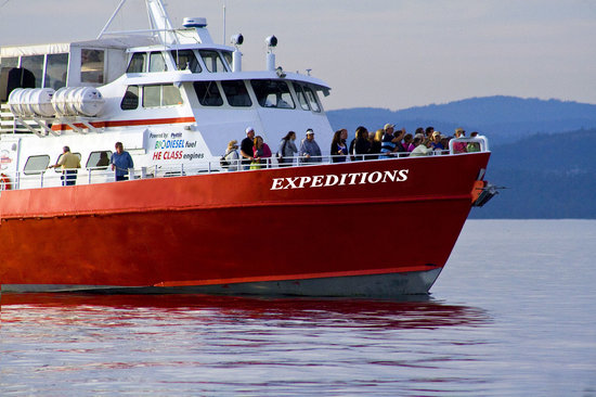 ‪‪Expeditions NW‬: Expeditions NW Cruise‬