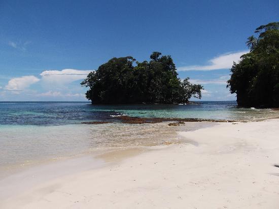 Playa Tortuga Hotel & Beach Resort: Playa