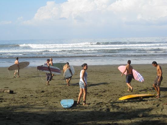 Uvita, Costa Rica: Mis amigos