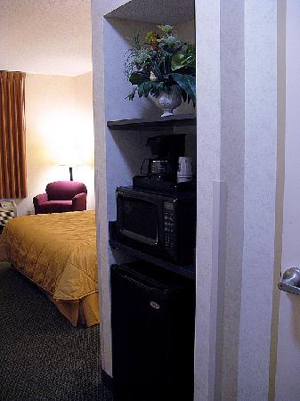 Sleep Inn & Suites Harrisonburg: Just inside the door, bathroom to right, closet is on far left, after the desk area.