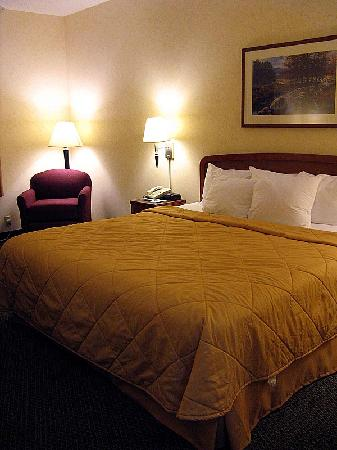 Sleep Inn & Suites Harrisonburg: Another view of the arm chair and the king bed.