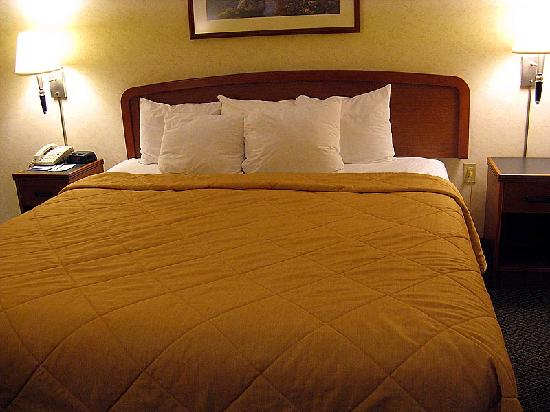 Sleep Inn & Suites Harrisonburg: The king bed has night stands on either side, and five pillows.