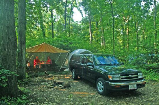 Granite Hill Camping Resort: Wooded Tent Sites