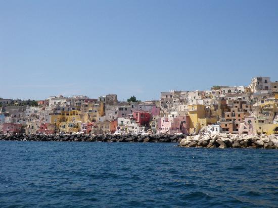 C.T.P.Boat excursions: Marina Corricella