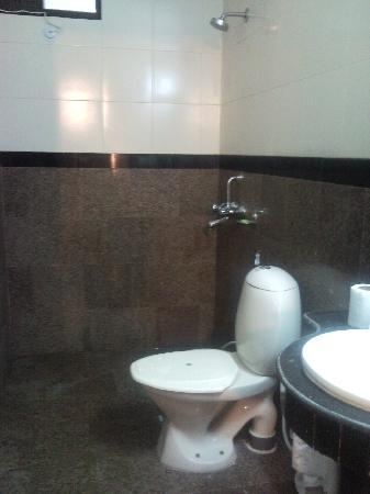 Vivek Hotel: Bathroom