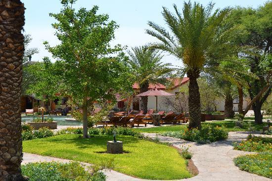 Namib Desert Lodge: jardins intérieurs du lodge