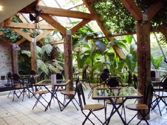 Hotel Saint Nicolas: Le petit déjeuner sous la serre tropicale
