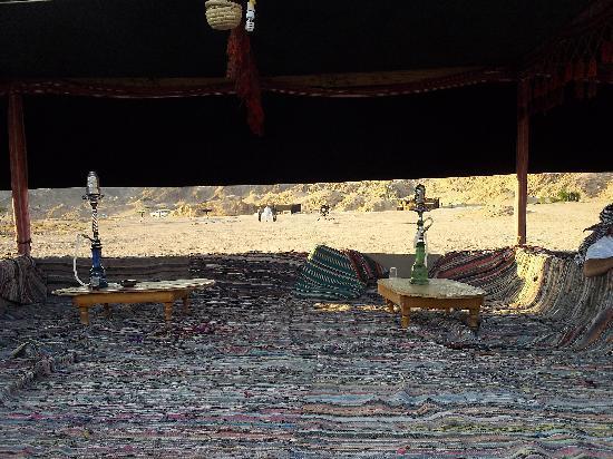 Sinai Safari Adventures : Bedouin Tent - Star Gazing