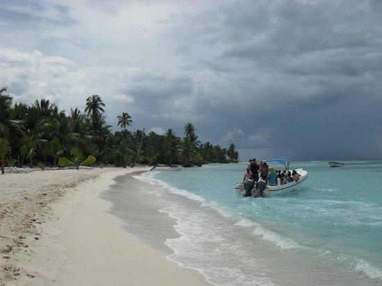 Isla Saona: Saona Island Beach...slightly overcast that day but still stunning