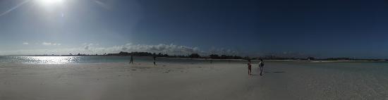 Jacaranda Beach Resort: jacaranda visto dal mare