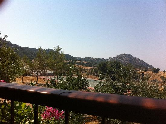 Blacktree Farm and Cottages: View from the terrace restaurant