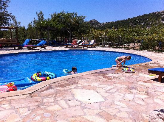 Blacktree Farm and Cottages: The Pool