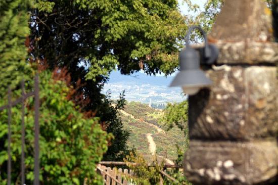 Podere Casanova: Panoramic view