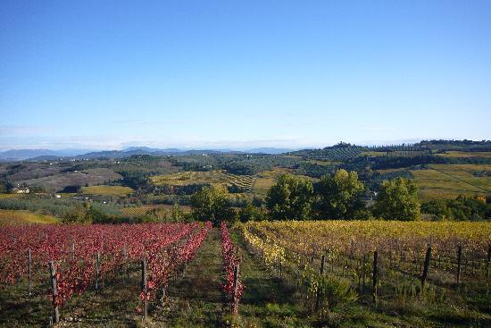 Podere Casanova: Autumn in Chianti
