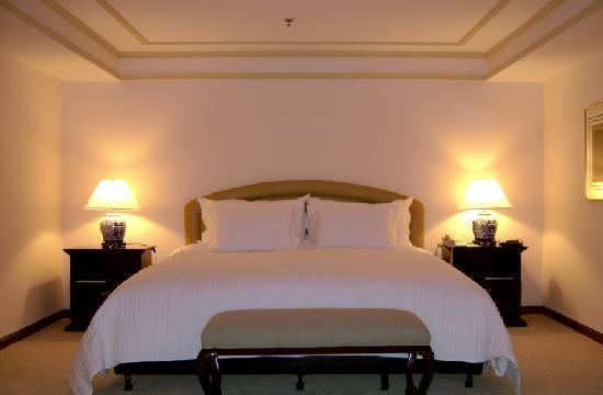 Hotel Transamerica Sao Paulo: Suíte Presidencial / Presidential Suite
