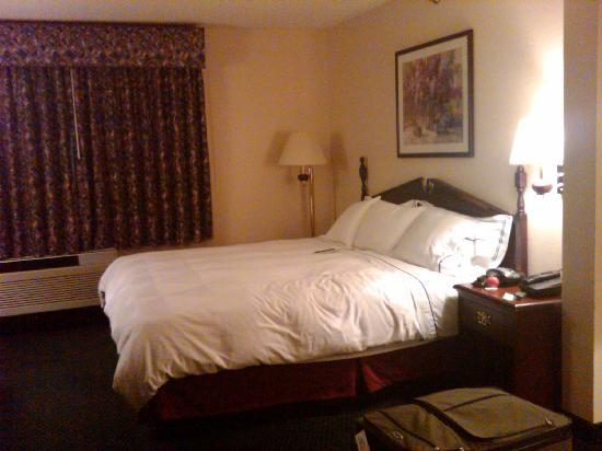 DoubleTree by Hilton Des Moines Airport: Room