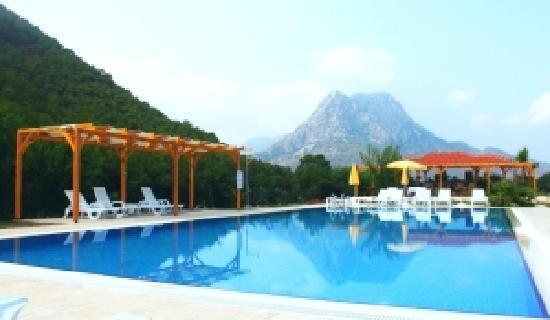 Yonca Butik Hotel : pool