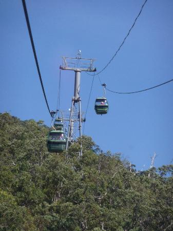 Down Under Tours - Day Tours : Skyrail
