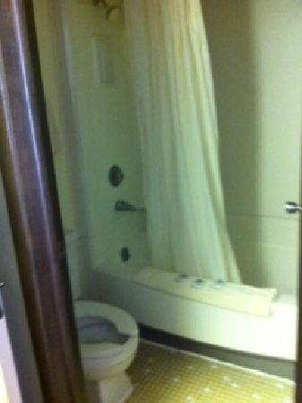 Americas Best Value Inn La Crosse: bath