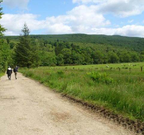 Home Farm Cottages: the road less travelled