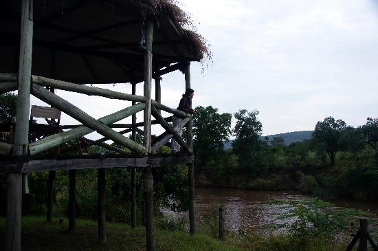 Cheetah Tented Camp: El balcón