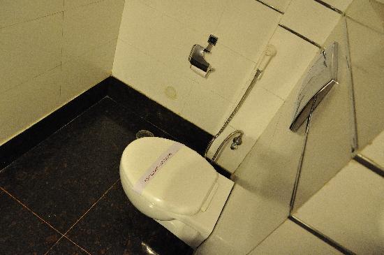 Hotel Le Roi: トイレには少ないながらペーパーもあります