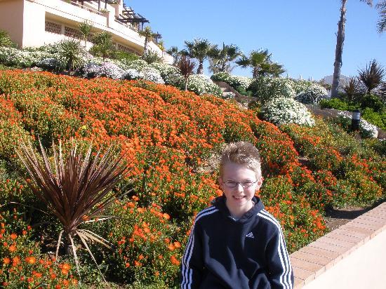 CLC San Diego Suites: Well kept gardens