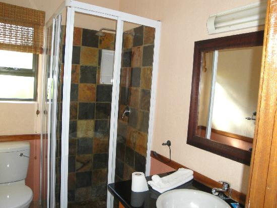 Clarens, Южная Африка: shower in 2nd bathroom