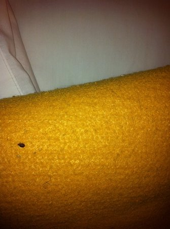 Coraopolis, Pensilvanya: bed bug room 138
