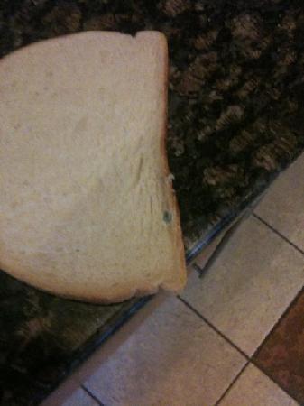 Ibis Chesterfield Centre: bread at breakfast