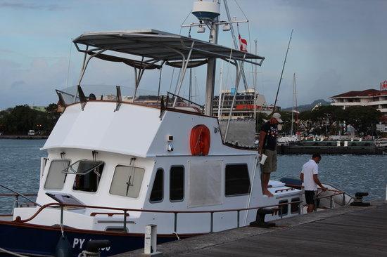 Nemo Cruises Day: Nemo et son equipage!