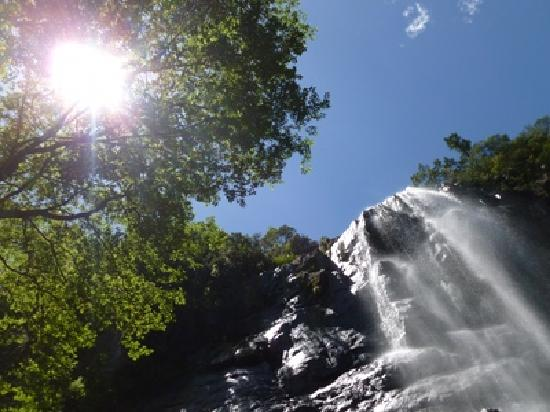 The Edge Mountain Retreat: The nearby Madonna & Child Falls